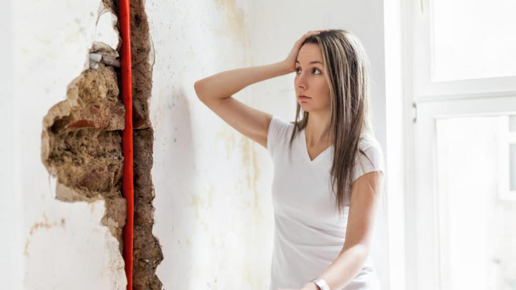 Water Damage and/or Mold