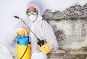 Water damage and mold remediation